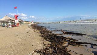 Erosione costa
