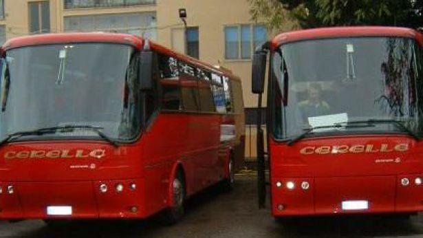 Due mezzi della Cerella Bus