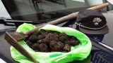 I tartufi posti sotto sequestro