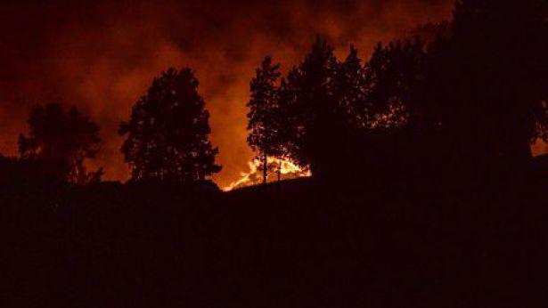 Termoli: incendio località San Giacomo