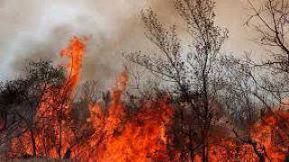 Il fuoco sulla collina della Selvotta