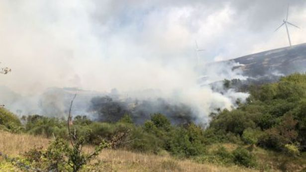 Fiamme in montagna